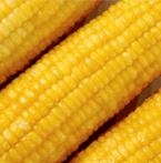 fagyasztott kukorica